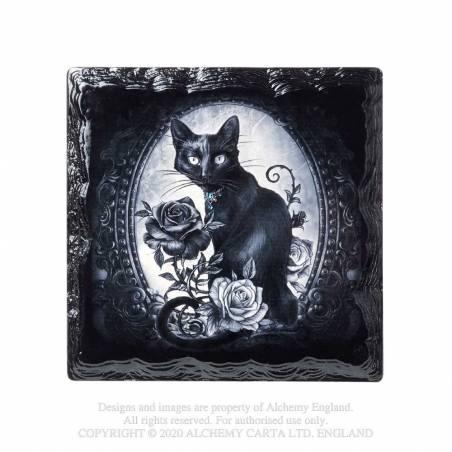 Paracelsus' - Cat Roses