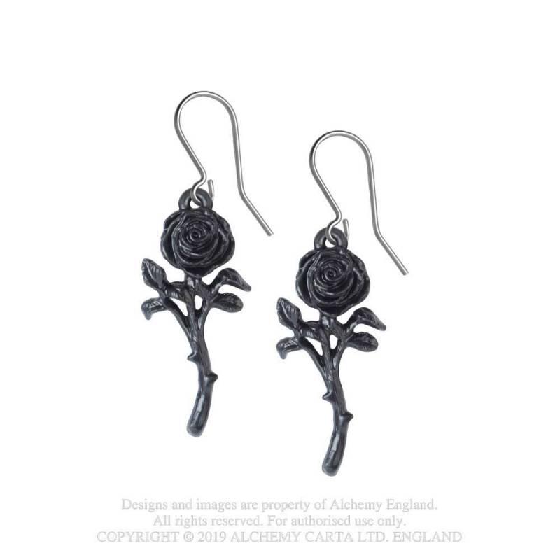 The Romance of the Black Rose