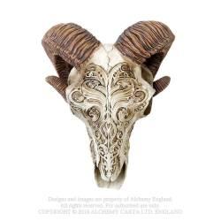 Scrimshaw Ram Skull