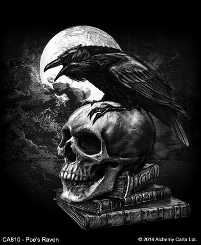 Poe's Raven (CA810)