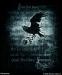 Nevermore (CA418BR )