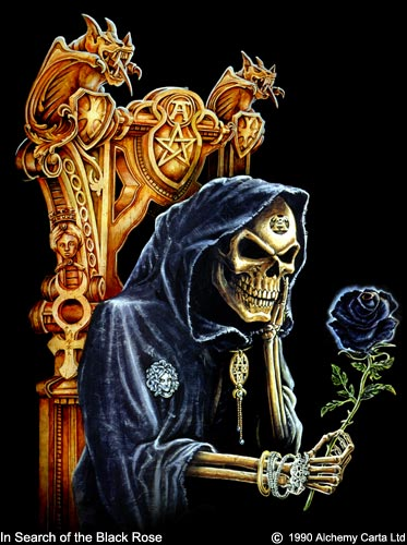 In search of the Black Rose (CA016)