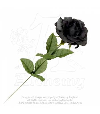 black-imitation-rose