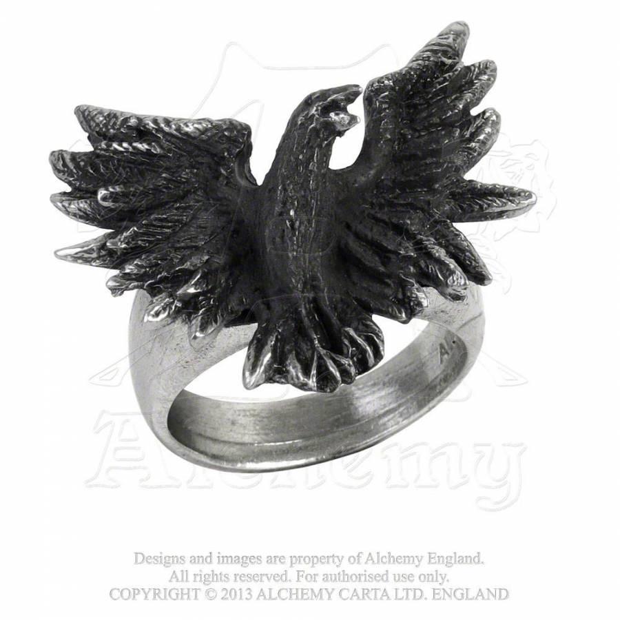 flocking-raven