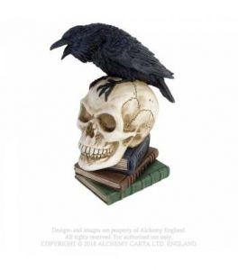 Poe's Raven (V17)